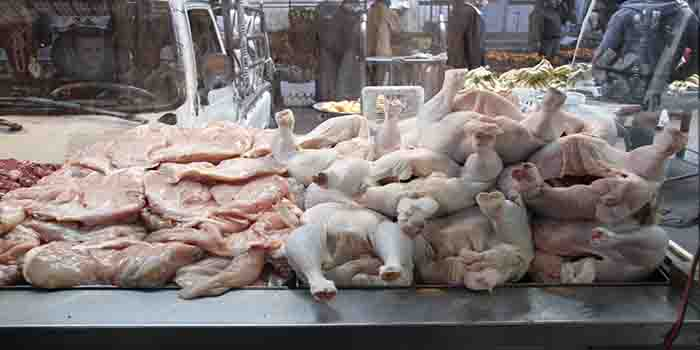 إجراءات حكومية لضبط أسعار الإنتاج الحيواني ومعالجة الازدحام على المنافذ التسويقية