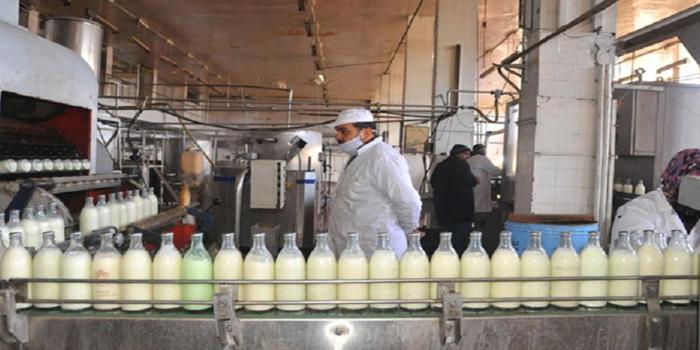(ألبان دمشق) و (الكونسروة) تدخلان ميدان الأسواق الشعبية لكسر ارتفاع الأسعار