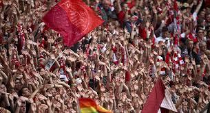 مشجعان يتسلقان شجرة بارتفاع 12 مترا لحضور مباراة بايرن ميونيخ