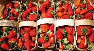 تحمي من مرض السكري والسرطان... خبيرة تغذية تتحدث عن الخصائص المفيدة للفراولة