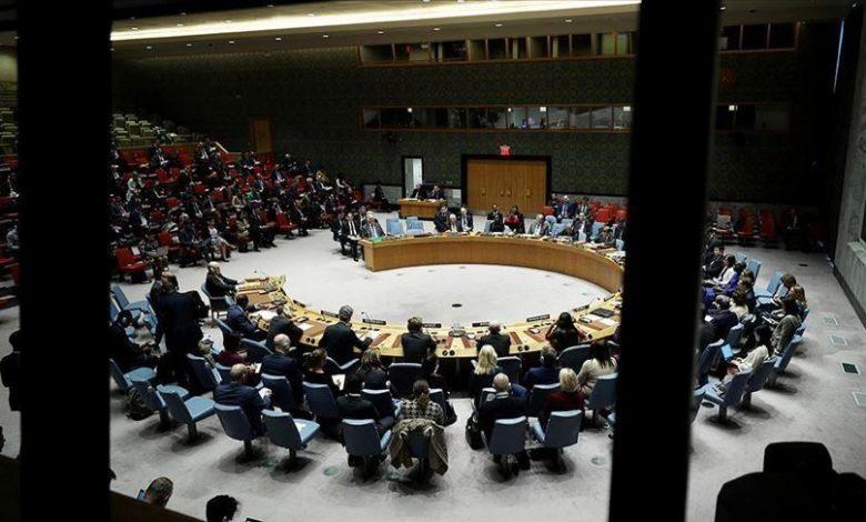 فيتو روسى صيني مزدوج ضد مشروع قرار ألماني بلجيكي لتمديد آلية المساعدات الأممية لسورية عبر الحدود