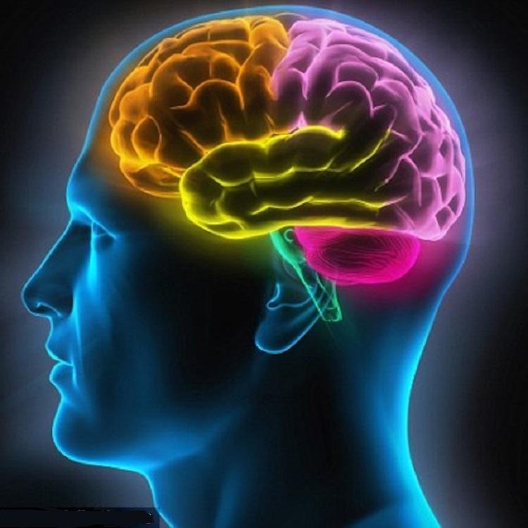 الفيزيولوجيا والعمر والتدبير الدوائي