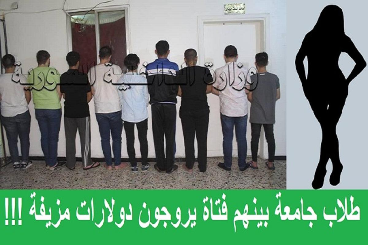 طلاب جامعة بينهم فتاة يروجون دولارات مزيفة !!!
