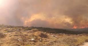 96 حريقاً في حماة و77 بمصياف تلتهم مئات الدونمات من المزروعات والحراج والضرار خفيفة